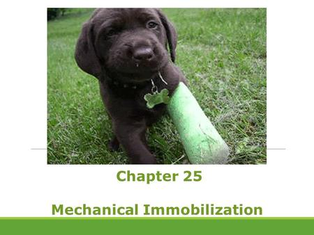 Chapter 25 Mechanical Immobilization. Some people are inactive and physically immobile due to overall debilitating conditions. Others have impaired mobility.