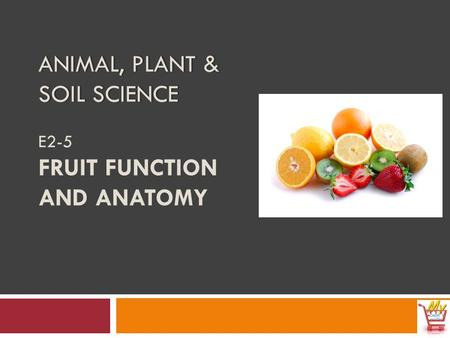 ANIMAL, PLANT & SOIL SCIENCE ANIMAL, PLANT & SOIL SCIENCE E2-5 FRUIT FUNCTION AND ANATOMY.