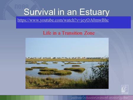 Survival in an Estuary Life in a Transition Zone https://www.youtube.com/watch?v=jeyOA0mwBhc.