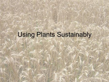 Using Plants Sustainably. Sustainable Agriculture in Canada The two main agricultural practices used by Canadian farmers to increase crop yields are the.