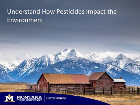 Understand How Pesticides Impact the Environment.