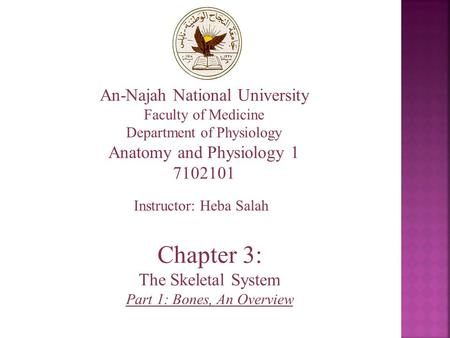 An-Najah National University Faculty of Medicine Department of Physiology Anatomy and Physiology 1 7102101 Instructor: Heba Salah Chapter 3: The Skeletal.