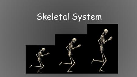 Skeletal System. 5 Functions of the Skeletal System 1. Movement: Skeletal system provides points of attachment for muscles. Your legs and arms move when.
