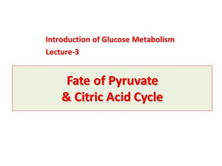 Fate of Pyruvate & Citric Acid Cycle Introduction of Glucose Metabolism Lecture-3.
