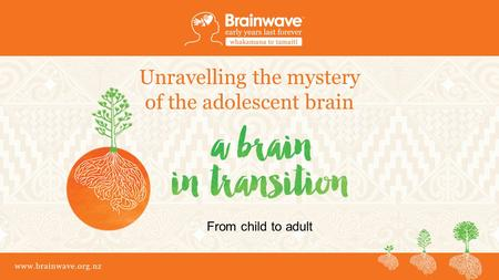 Www.brainwave.org.nz Unravelling the mystery of the adolescent brain From child to adult.