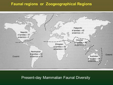 Faunal regions or Zoogeographical Regions Present-day Mammalian Faunal Diversity.
