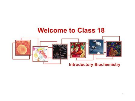 Welcome to Class 18 Introductory Biochemistry.