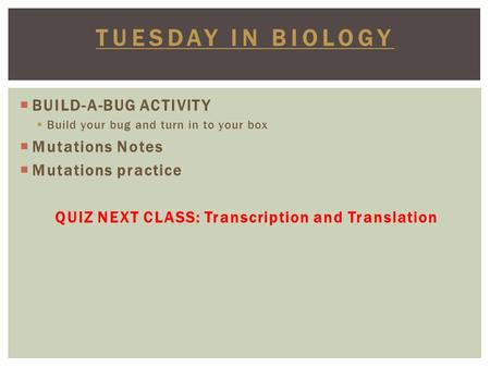  BUILD-A-BUG ACTIVITY  Build your bug and turn in to your box  Mutations Notes  Mutations practice QUIZ NEXT CLASS: Transcription and Translation TUESDAY.