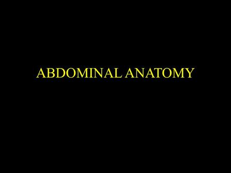 ABDOMINAL ANATOMY. Abdominal X-Ray 1, 11th rib. 2, Vertebral body (TH 12). 3, Gas in stomach. 4, Gas in colon (splenic flexure). 5, Gas in transverse.