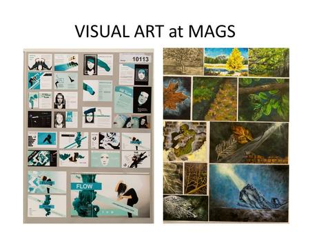VISUAL ART at MAGS. Academic Courses University of Auckland, Bachelor of Fine Arts, Bachelor of Architecture, Victoria University School of Architecture,