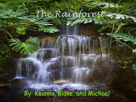 The Rainforest By: Keanna, Blake, and Michael. What is a rain forest? A rainforest is a place near the equator and is hot and humid. It rains almost everyday.