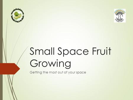 Small Space Fruit Growing Getting the most out of your space.