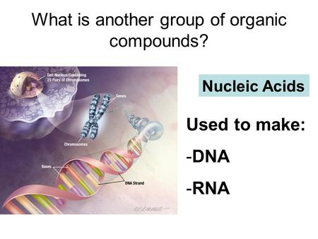 What is another group of organic compounds? Nucleic Acids Used to make: -DNA -RNA.