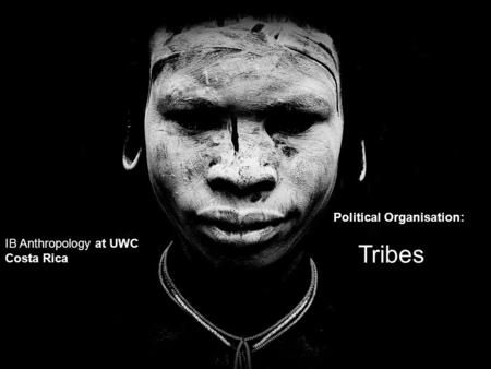 IB Anthropology at UWC Costa Rica Political Organisation: Tribes.