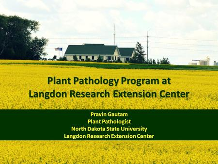Plant Pathology Program at Langdon Research Extension Center Pravin Gautam Plant Pathologist North Dakota State University Langdon Research Extension Center.