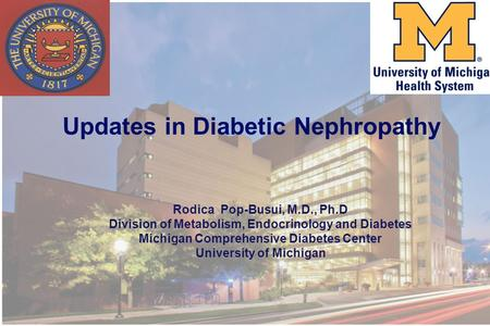 Updates in Diabetic Nephropathy Rodica Pop-Busui, M.D., Ph.D Division of Metabolism, Endocrinology and Diabetes Michigan Comprehensive Diabetes Center.