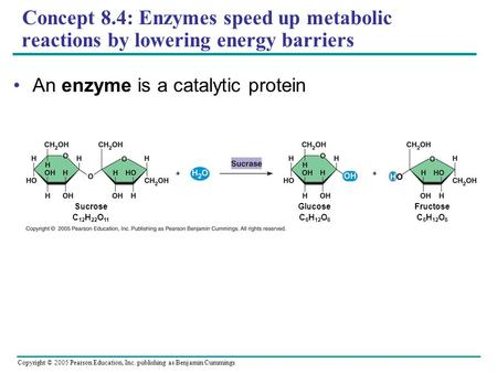 Copyright © 2005 Pearson Education, Inc. publishing as Benjamin Cummings Concept 8.4: Enzymes speed up metabolic reactions by lowering energy barriers.