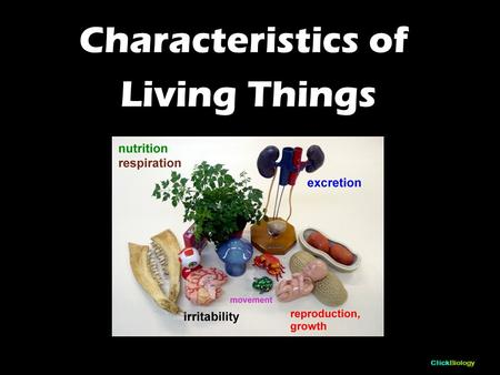 ClickBiology Characteristics of Living Things. ClickBiology You will need to be able to: List and define the characteristics of living organisms.
