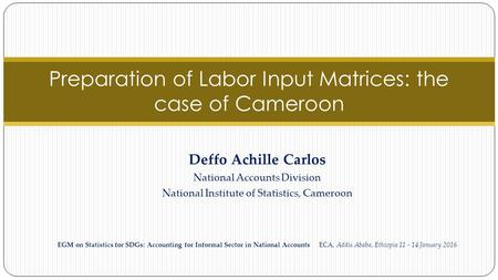 Preparation of Labor Input Matrices: the case of Cameroon Deffo Achille Carlos National Accounts Division National Institute of Statistics, Cameroon EGM.