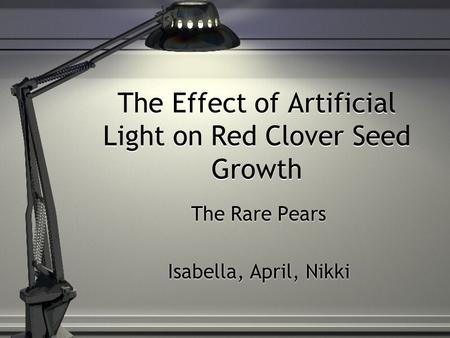 The Effect of Artificial Light on Red Clover Seed Growth The Rare Pears Isabella, April, Nikki The Rare Pears Isabella, April, Nikki.