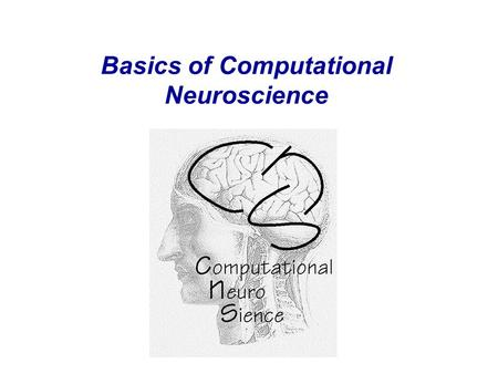 Basics of Computational Neuroscience. What is computational neuroscience ? The Interdisciplinary Nature of Computational Neuroscience.