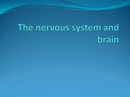 Two functions of the nervous system a. Somatic, voluntary movement b. autonomic, involuntary movement.