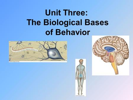 Unit Three: The Biological Bases of Behavior. The body's two communication systems, the nervous system and the endocrine system, both use chemical messengers.
