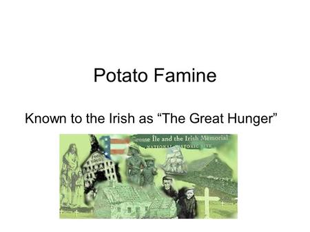 the famine in ireland essay