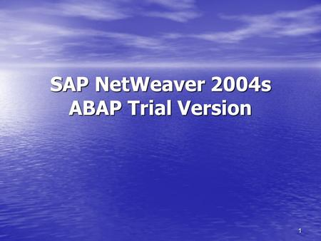 1 SAP NetWeaver 2004s ABAP Trial Version. 2 SAP NetWeaver Application Server ABAP with MaxDB SAP NetWeaver Application Server ABAP with MaxDB This package.