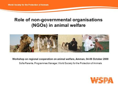 World Society for the Protection of Animals Role of non-governmental organisations (NGOs) in animal welfare Workshop on regional cooperation on animal.