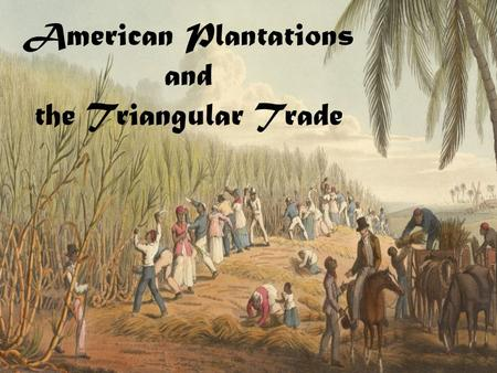 American Plantations and the Triangular Trade. American Plantations  Huge farms growing cash crops: sugar, cotton, coffee, tobacco  Required lots of.