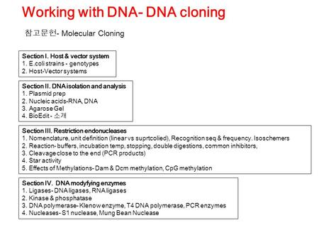 Section II. DNA isolation and analysis 1. Plasmid prep 2. Nucleic acids-RNA, DNA 3. Agarose Gel 4. BioEdit - 소개 Working with DNA- DNA cloning Section III.