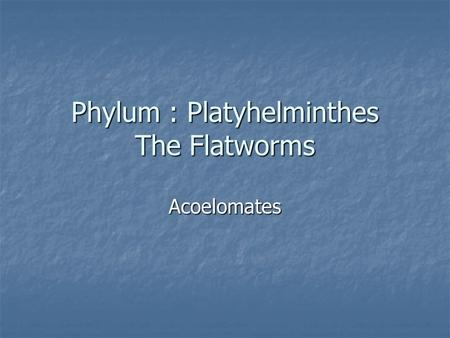 Phylum : Platyhelminthes The Flatworms Acoelomates.