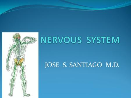 THE NERVOUS SYSTEM JOSE S. SANTIAGO M.D..