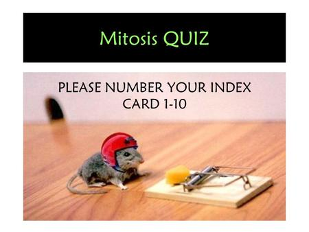 Mitosis QUIZ PLEASE NUMBER YOUR INDEX CARD 1-10. Hint: Some answers may be used more than once!!!
