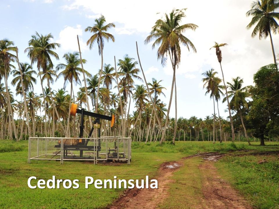 LGO Cedros Lease Position 16 Installing new well tanks Beach Oilfield Cedros Leases Icacos Leases TED 3D Seismic Bonasse Field Icacos Field LGO Cedros Leases Galpha Point FRM-1 Deep Well