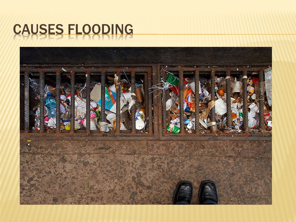  Plastic bags wash into storm drains and interfere with drainage.