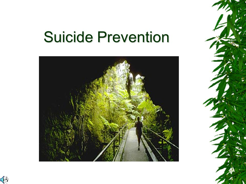 Suicide is currently the fifth leading cause of death among Canadians.