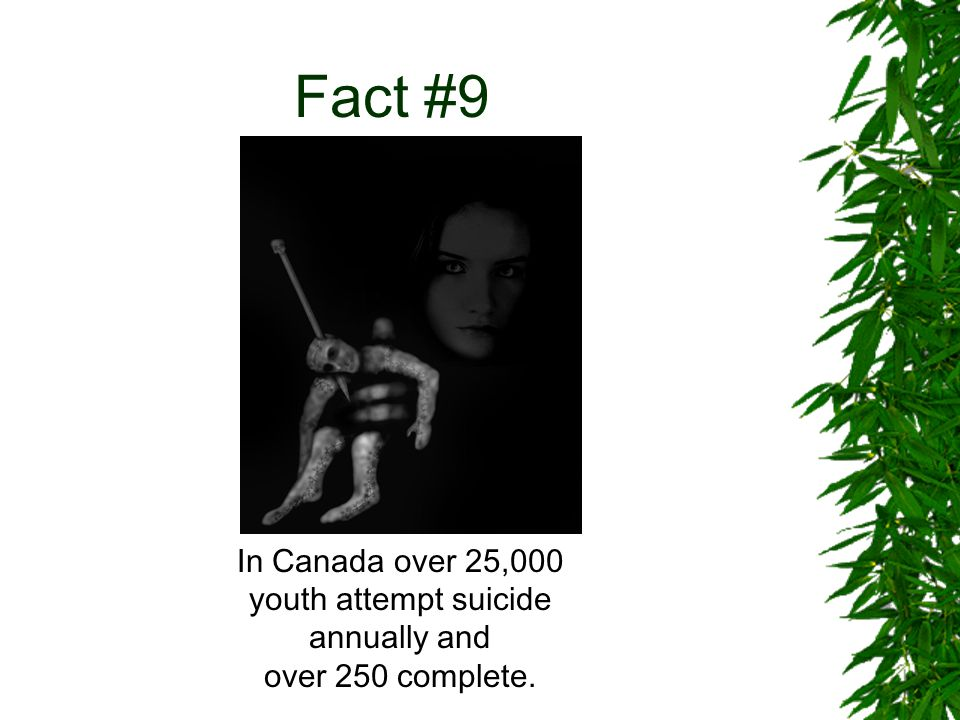 Fact 10 Research suggests that adolescents who use marijuana and/or cigarettes are at increased risk of suicide.