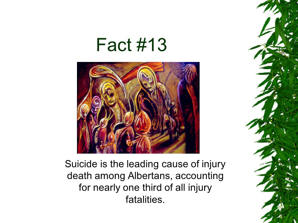 Fact #14 Each year, on average, 294 Canadian youths die from suicide, which is ¼ of all youth deaths.