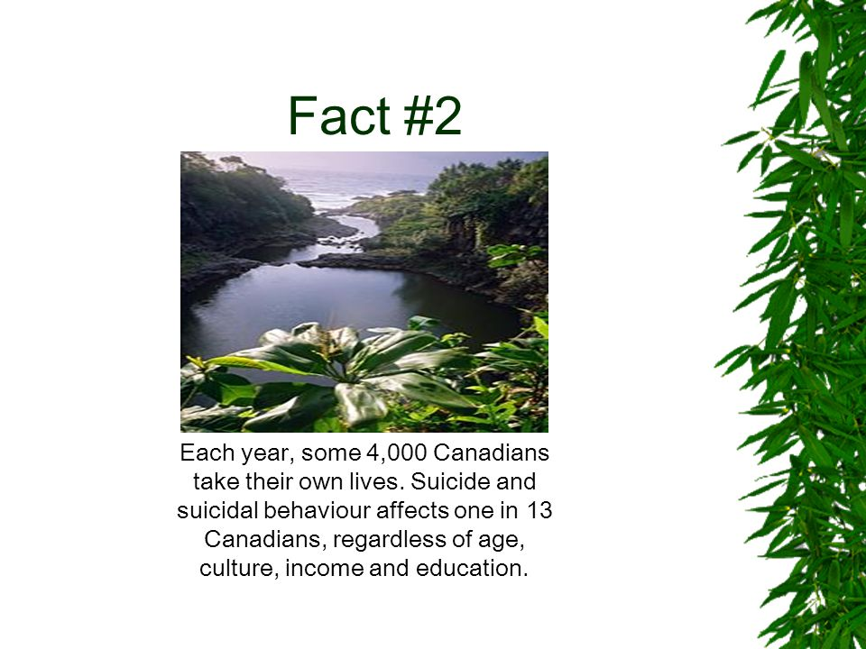 Fact #3 Between 70% and 80% of Canadian youth consider suicide before graduation.