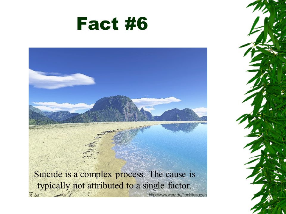 Fact #7 Suicide is the second leading cause of death among Canadian youth aged 10-24.
