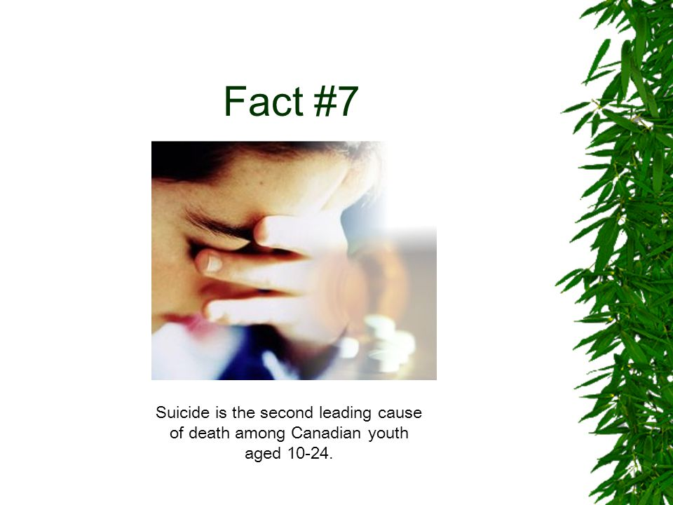 Fact #8 Up to 30% of gay and lesbian youth attempt suicide.