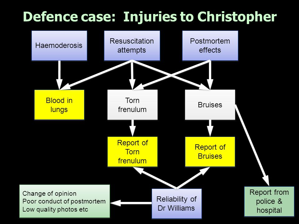 Defence case: Injuries to Harry Hypoxic damage to brain Haemorrhage s to eyelids Haemorrhage s to eyes Natural causes post-death Natural causes post-death Postmortem Rib injuries Spinal injuries Reliability of Dr Williams Change of opinion Prior error with slides Change of opinion Prior error with slides