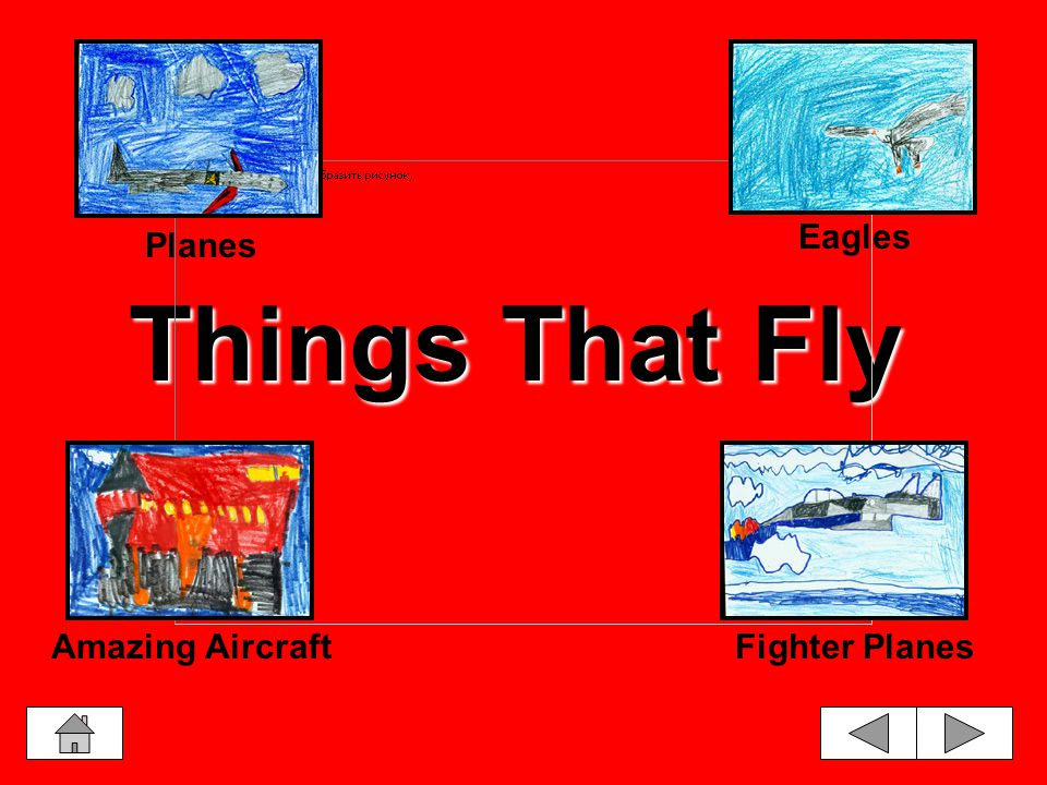 Things That Fly Planes Eagles Amazing AircraftFighter Planes