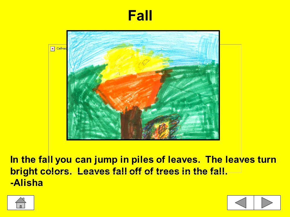 In the fall you can jump in piles of leaves.The leaves turn bright colors.