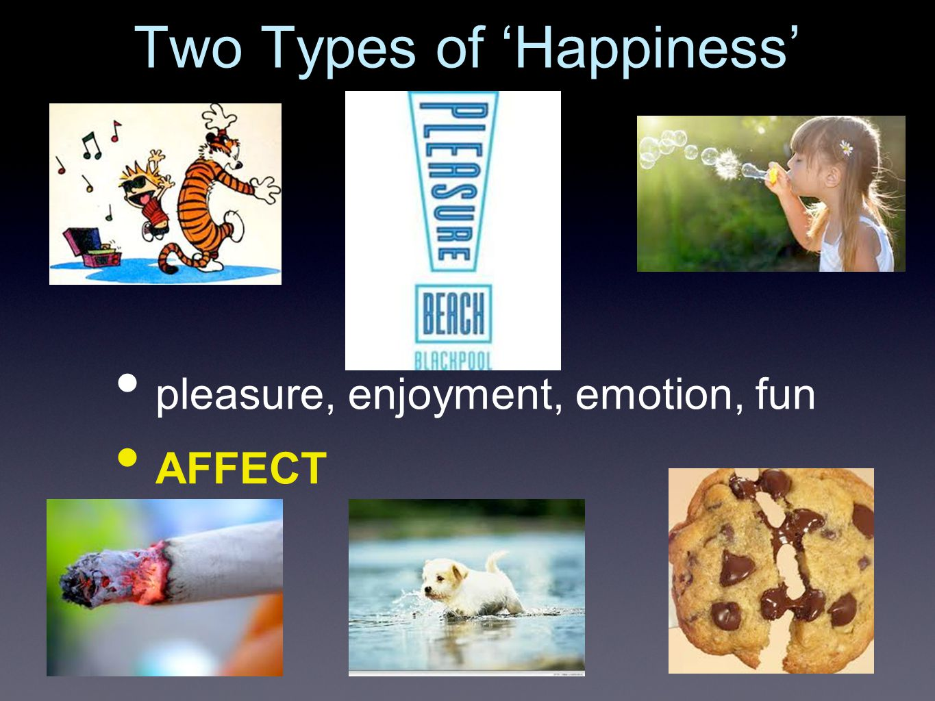 Happiness the Second gratification, contentment, meaning, reflection COGNITION