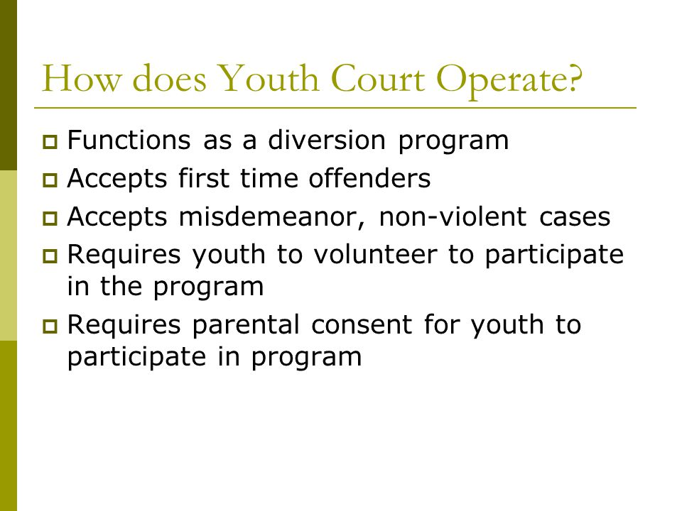 What is the Time Dollar Youth Court.