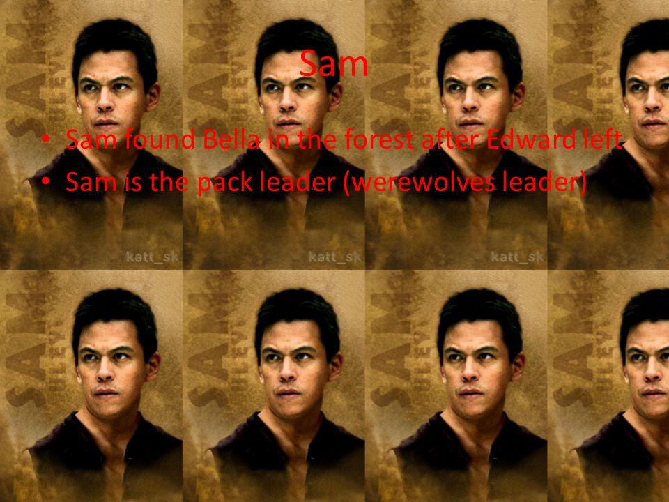 Sam Sam found Bella in the forest after Edward left Sam is the pack leader (werewolves leader)