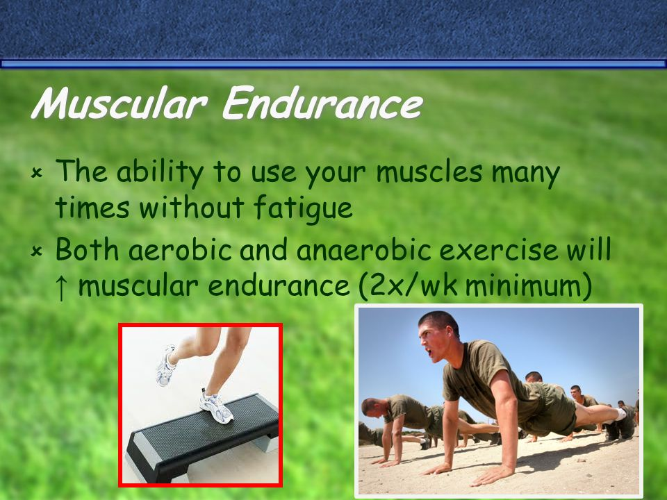 Muscular Strength  The amount of force a muscle can exert against heavy resistance  Anaerobic exercise ↑ muscular strength (2x/wk minimum)